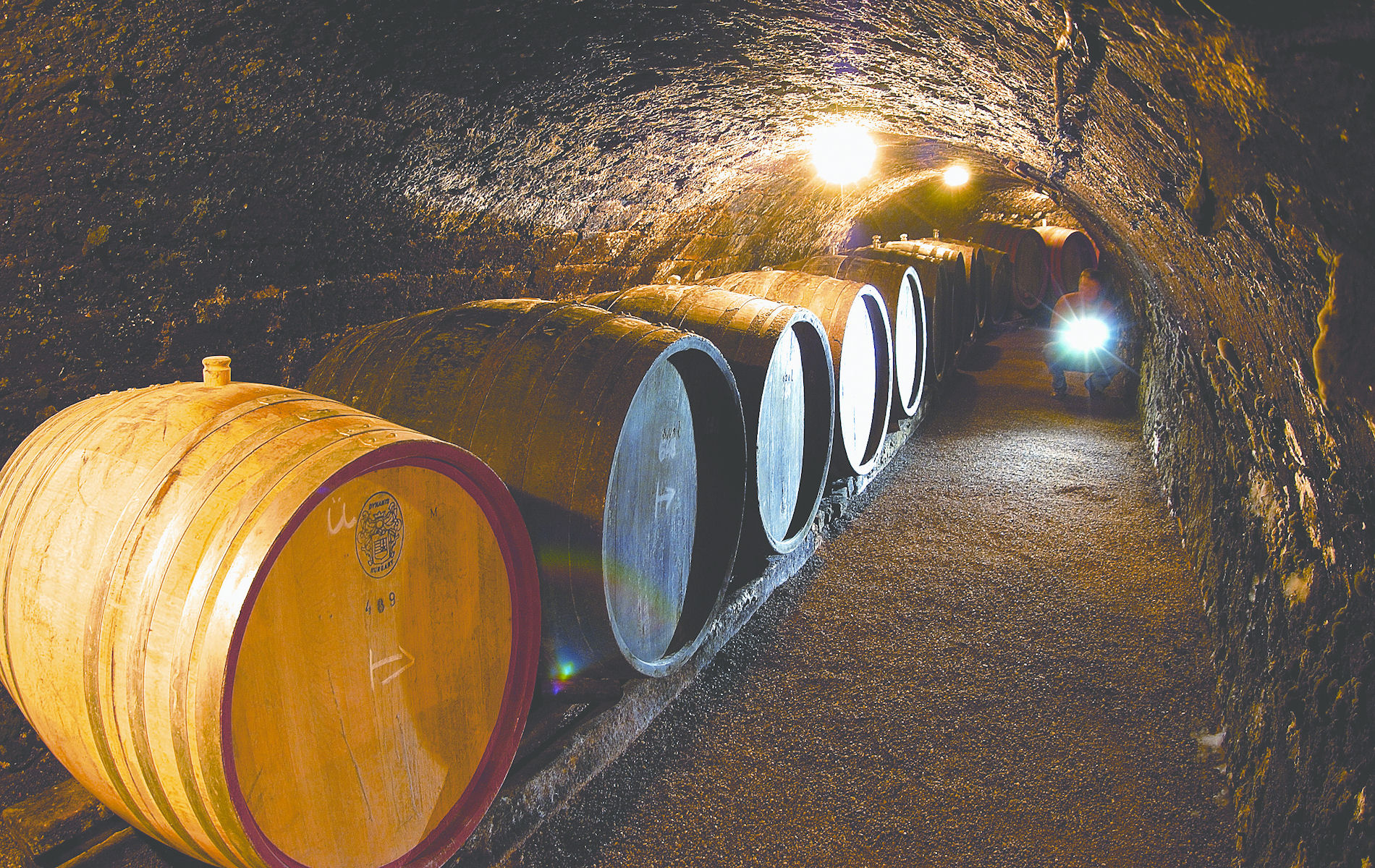 Royal Tokaji Wine Barrels