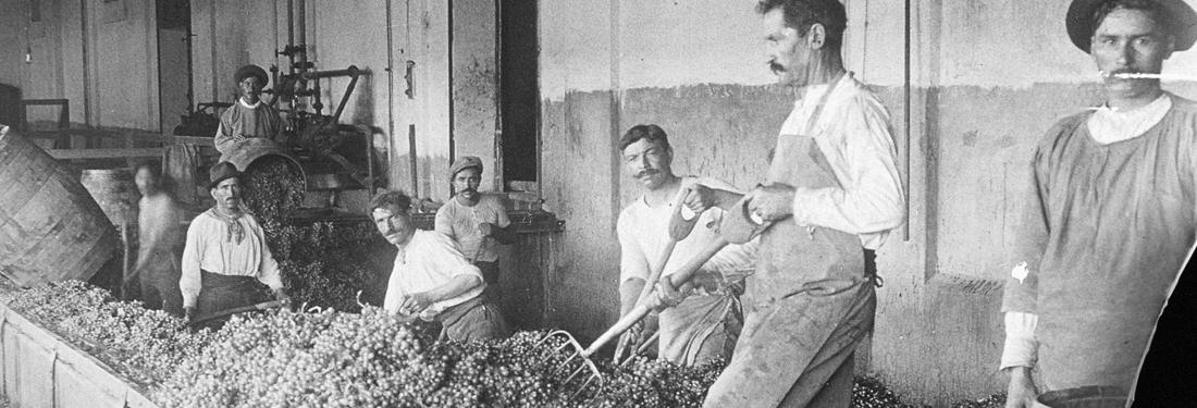 Escorihuela vintage photograph grinding