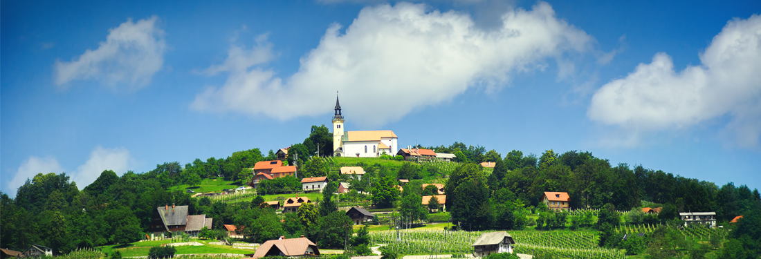 P&F winery in Slovenia