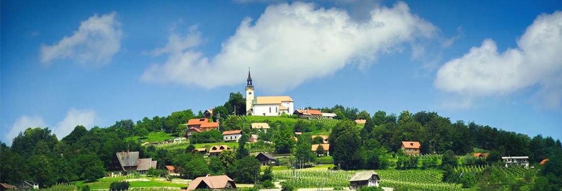 P&F winery in Slovenia